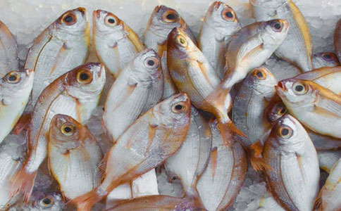 海鲜进口bg