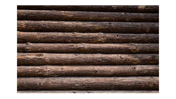 东莞木材进口代理企业哪家好?