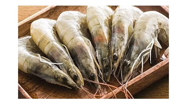 [转载海关]厄瓜多尔白虾恢复进口!找食品进口报关企业