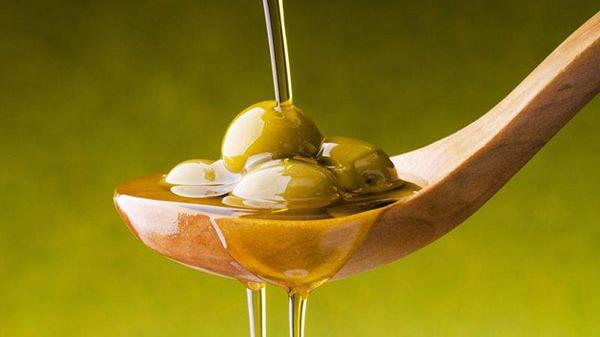 橄榄油进口报关
