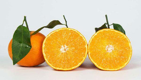 智利柑橘进口报关代理要哪些手续?_东莞鹏通为你解答