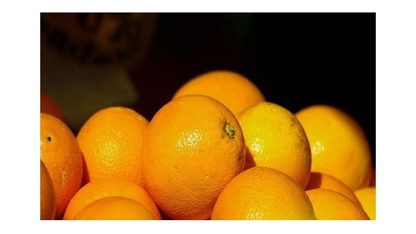 柑橘进口报关找这家专业水果清关公司能省钱!