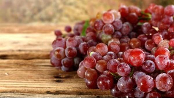 东莞葡萄进口报关代理注意事项及操作流程