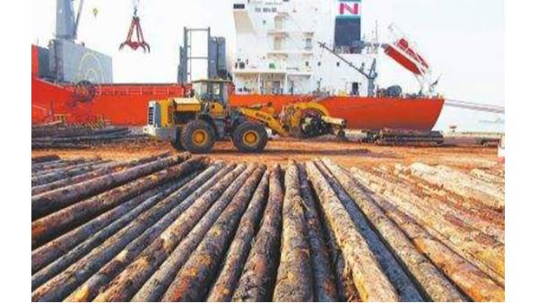 进口木材为什么做检验检疫?