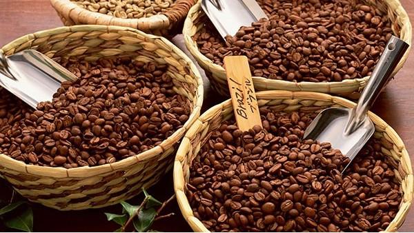 咖啡豆进口报检