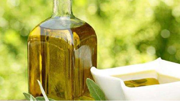 橄榄油进口报关代理