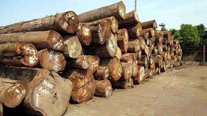 木材进口报关清关手续流程