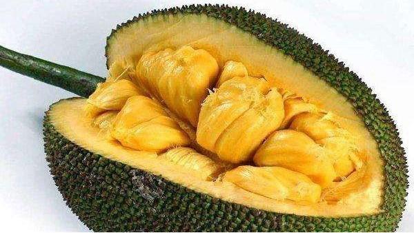 泰国甜菠萝蜜进口办理流程