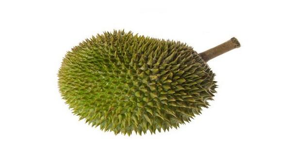 越南榴莲水果进口报关资料