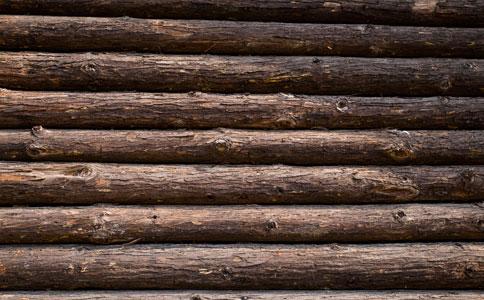 新进口木材