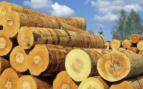 木材进口清关