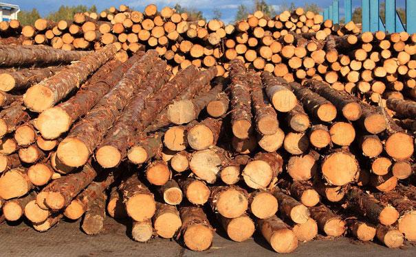 10木材d