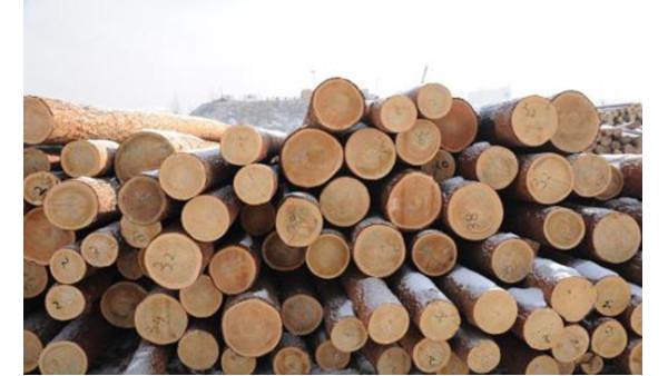 木材进口报关详细流程