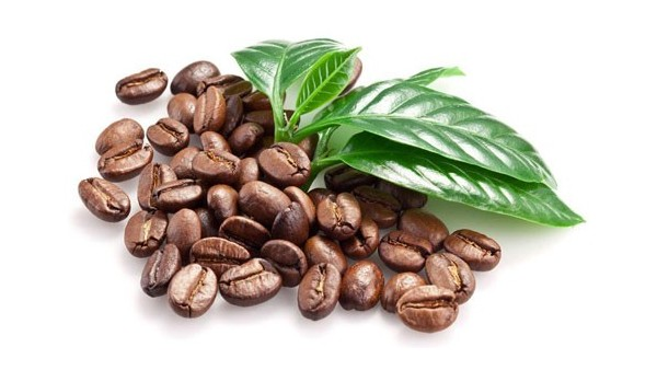 允许玻利维亚咖啡豆进口报关的检验检疫公告