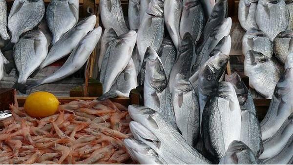 水产品进口报关需要办理哪些手续?